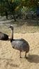 Besuch im Erfurter Zoo